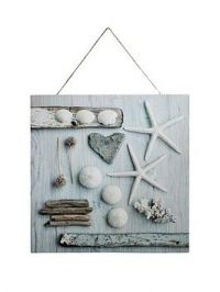 Arthouse Seaside Shells Canvas Wall Art With Rope