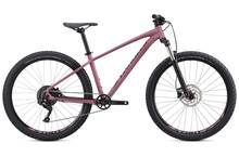 Specialized Pitch Expert 650B 2020 Mountain Bike Best Price, Cheapest Prices